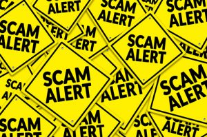pile of yellow signs that say scam alert